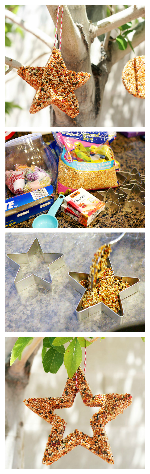 Bird Feeders Kids Craft | Fun indoor activities for kids
