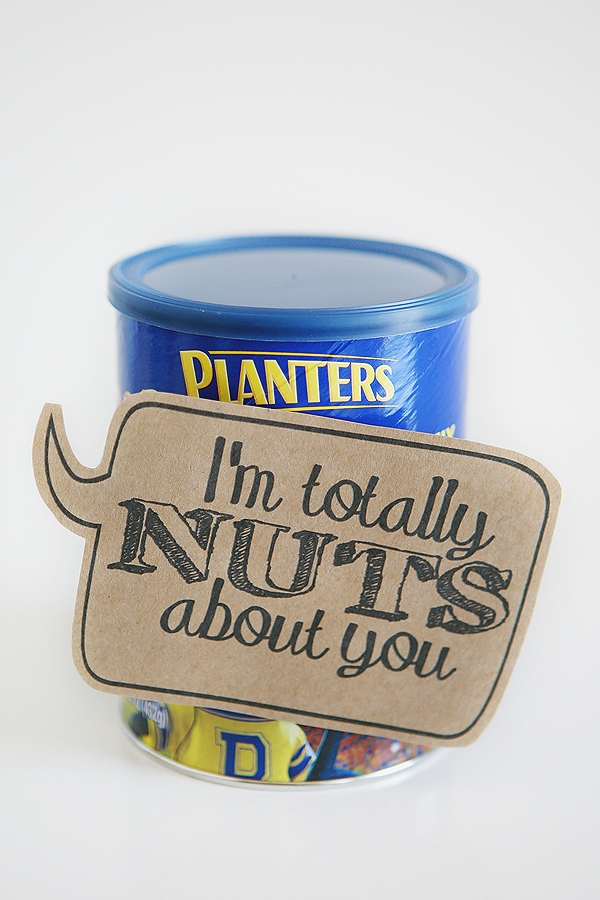 Quick and Cheesy Valentines. I'm totally nuts about you! Four other fun and inexpensive ideas too.