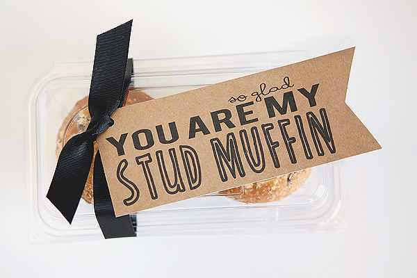 Quick and Cheesy Valentines. So glad you are my Stud Muffin! Four other fun and inexpensive ideas too.