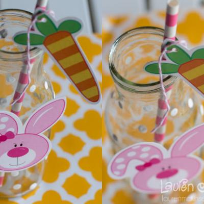 Hoppy Easter Bunny Glasses