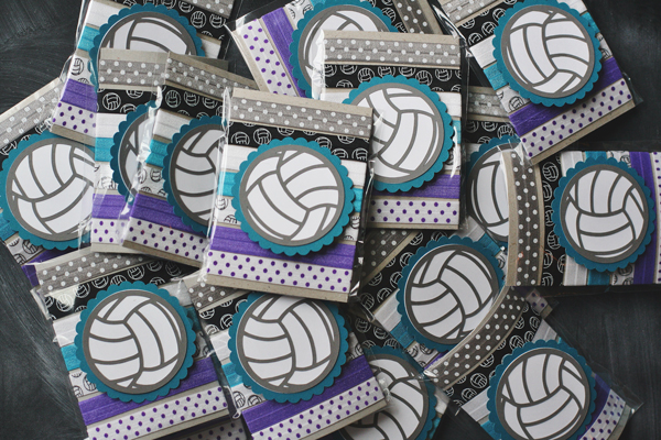 Team Hair Ties A New Silhouette Promo Volleyball