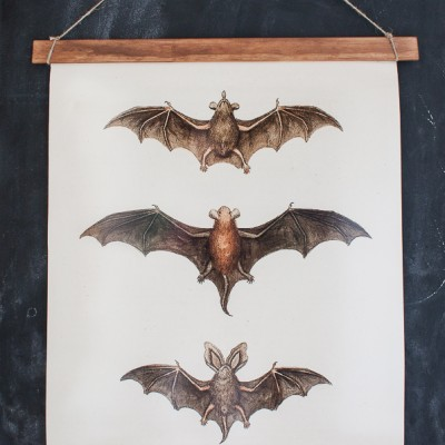 DIY Bat Print Wall Hanging