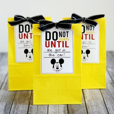 Disney Trip Fun Bags