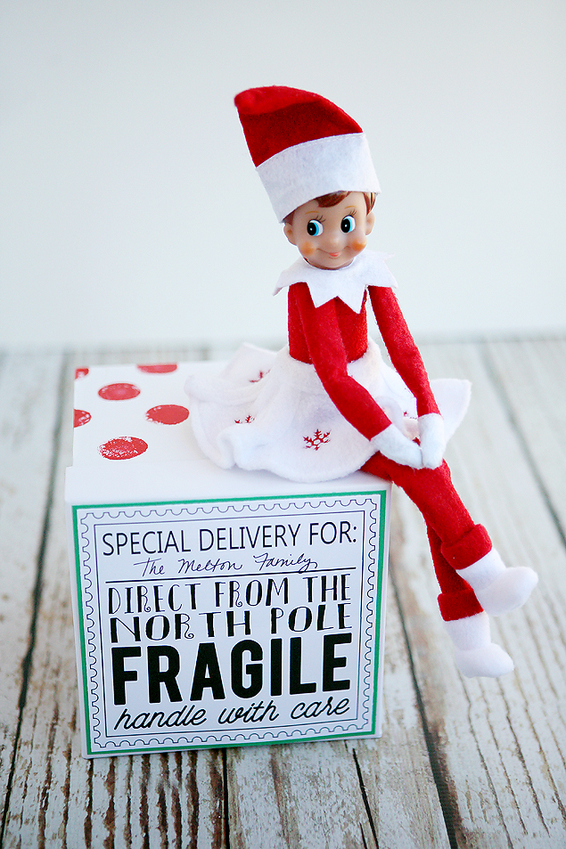 graphic about Free Printable North Pole Special Delivery Printable titled Elf Upon The Shelf Return Designs That Your Small children Will Get pleasure from