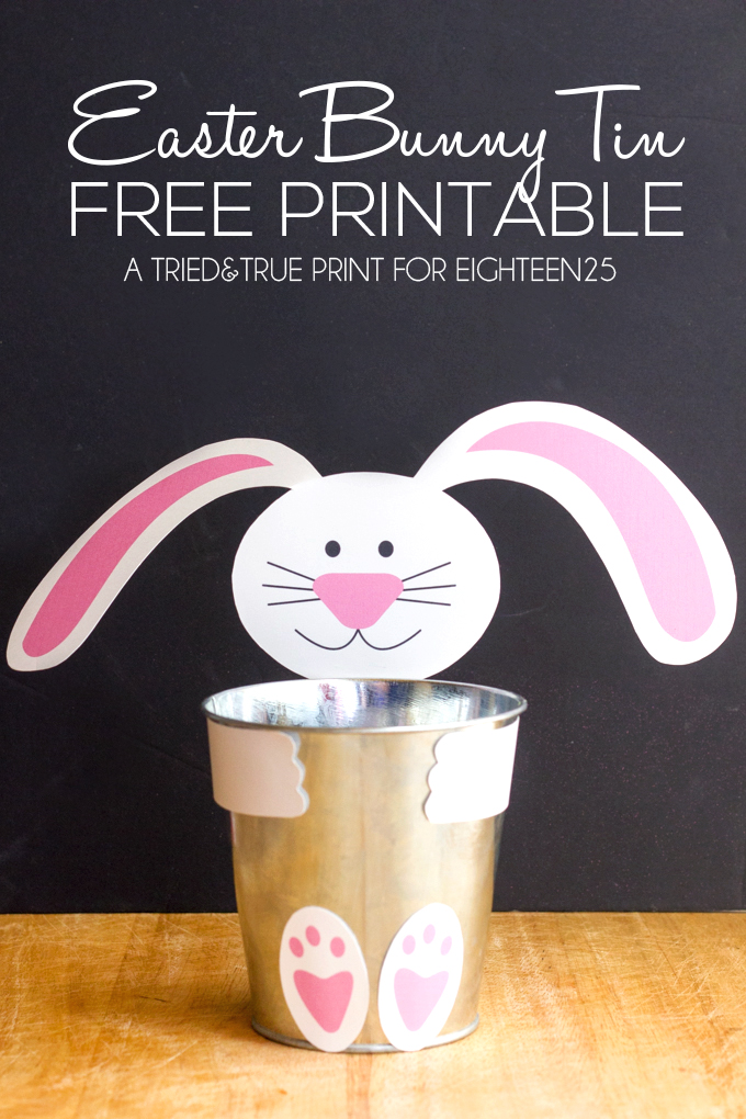 Fun Easter Bunny Ideas Eighteen25