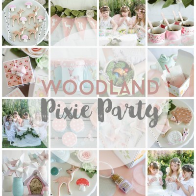 Woodland Pixie Party