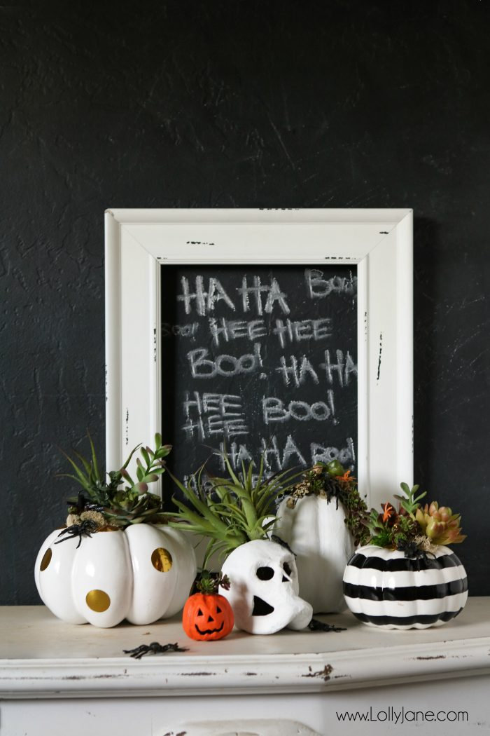 Halloween Succulent Planters | Halloween Decorations