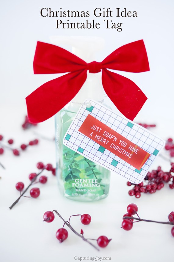 Neighbor Christmas Gift Ideas | Just Soap'n You Have A Merry Christmas | Capturing Joy