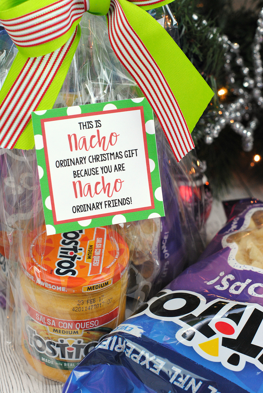Neighbor Christmas Gift Ideas | Nacho Neighbor Gift Idea | Fun Squared