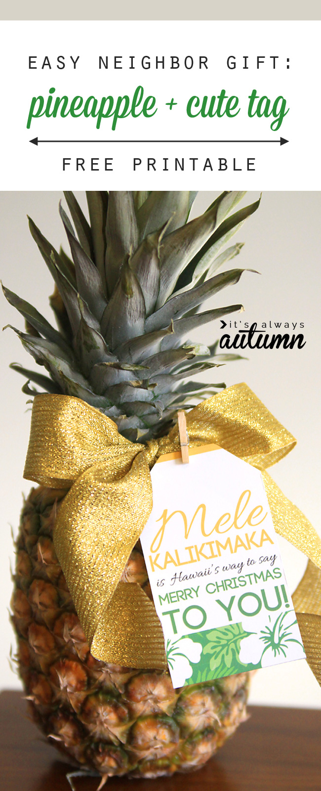Neighbor Christmas Gift Ideas | Mele Kalikimaka Pineapple Gift | It's Always Autumn