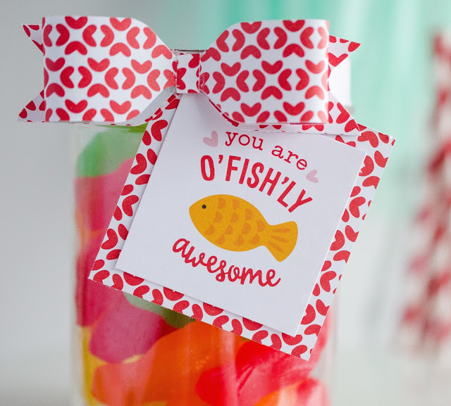 Sweet Valentine Gift Ideas | You Are Ou0027Fishu0027Ly Awesome