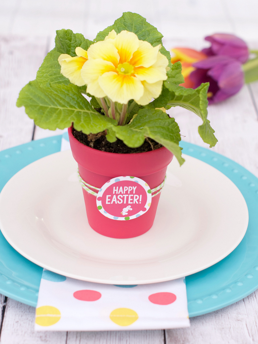 Spring Flowers Gift Idea with Free Printable from Fun Squared