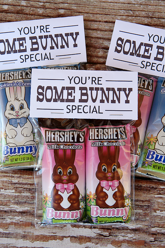 """You're Some Bunny Special"" Cute Easter Gift Idea"