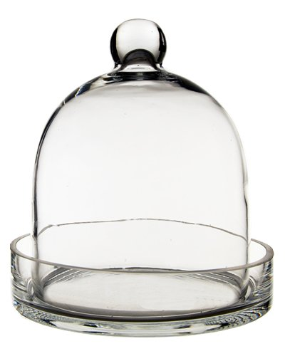 Farmhouse Finds on Amazon | Glass Cloche with Tray