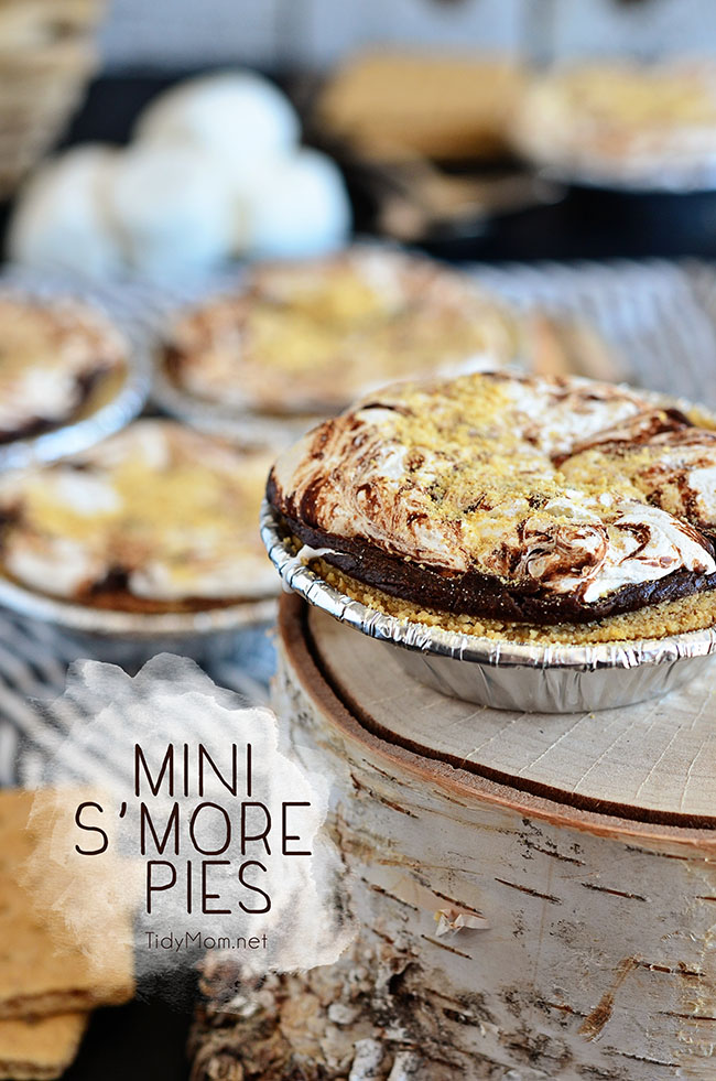 Mini S'mores Pies from Tidy Mom