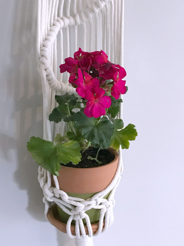 Show and Tell Link Party | Macrame and Terra Cotta Planter via My French Twist