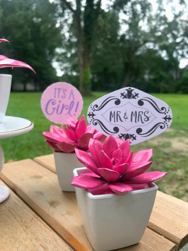 DIY Succulent Party Favors via Just a Little Creativity | Show and Tell Link Party