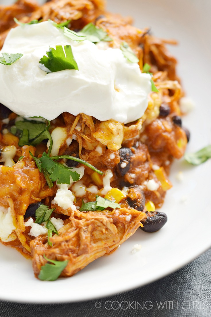 Instant Pot Mexican Chicken Casserole