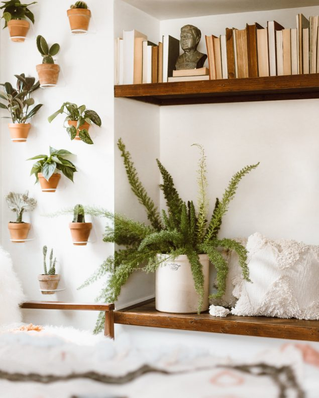How To Make A Living Wall