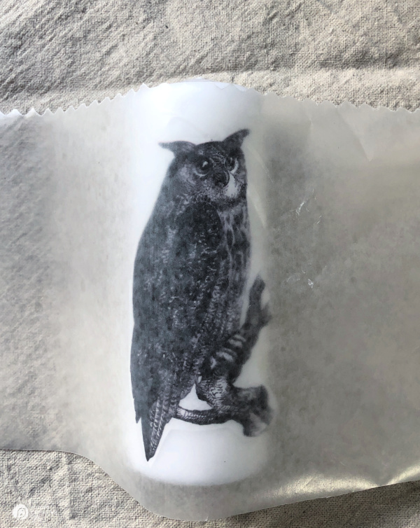 Placing wax paper over tissue image